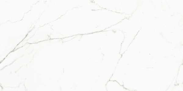 - 600 x 1200 mm (24 x 48 pollici) - aristone-white-1